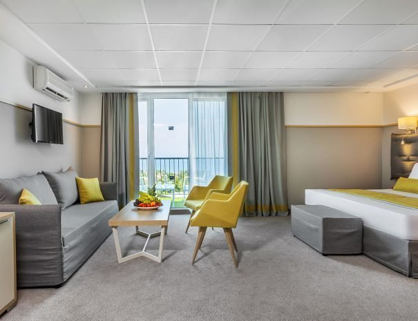 Junior Suites (1 room)